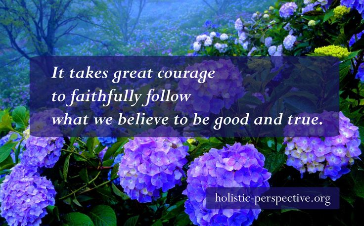 Theory of Holistic Perspective | Follow what is good and true