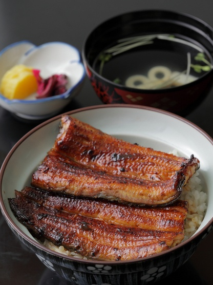 Japanese rice bowl with grilled eel 鰻丼