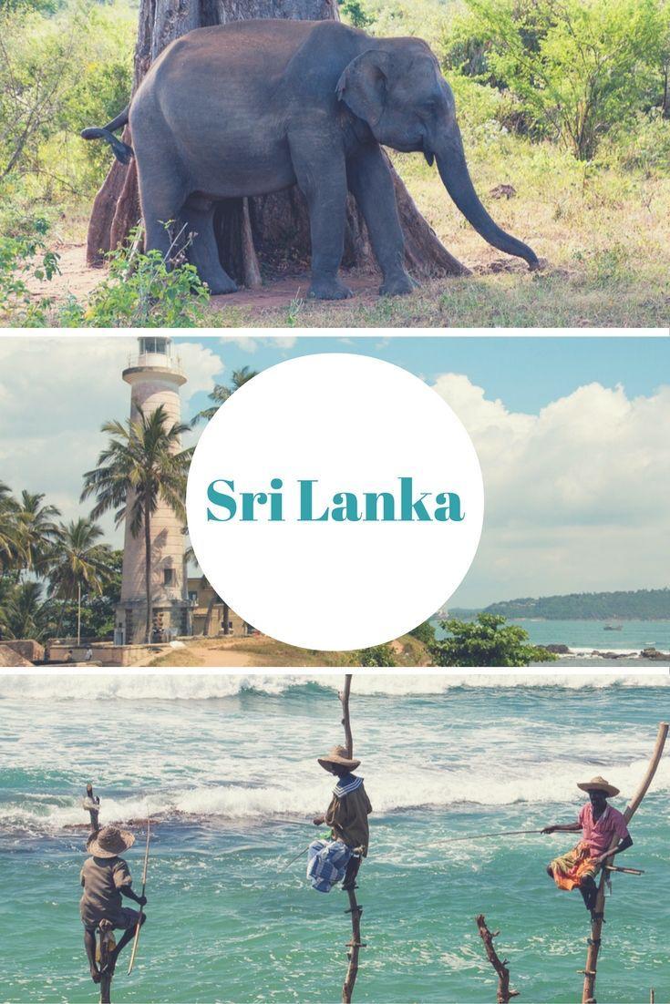 Sri Lanka: 15 Gründe, warum ihr jetzt dorthin reisen solltet