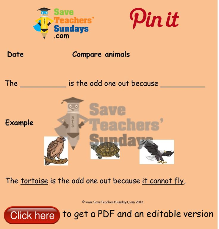 Comparing animals - odd one out instructions. Go to http://www.saveteacherssundays.com/science/year-1/381/lesson-10-comparing-animals/ to download this Comparing animals - odd one out instructions. #SaveTeachersSundaysUK