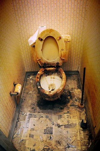 Nice Might Need Some Cleaning #toilet #abandoned