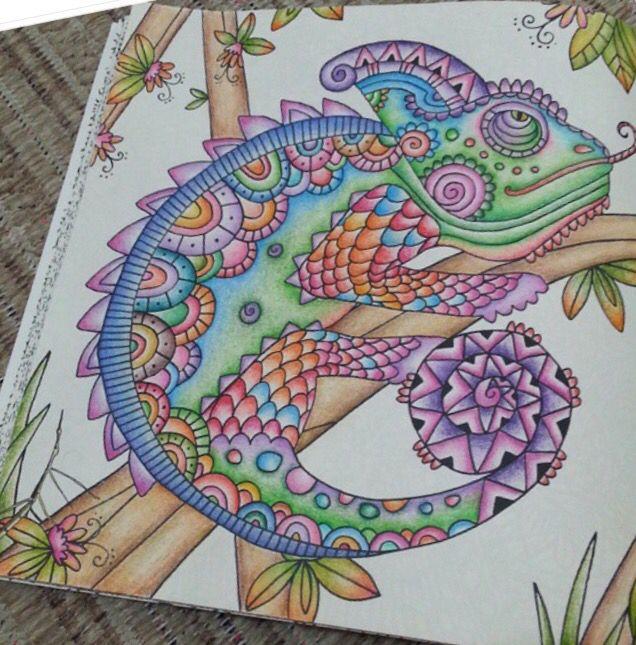 Animal Kingdom Inspirational Coloring Pages By Lehjoly Inspiracao Coloringbooks Livrosdecolorir Jardimsecreto Secretgarden