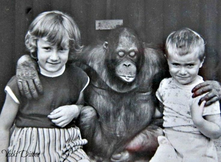 with my sister and brother at Chessington Zoo just a few decades ago