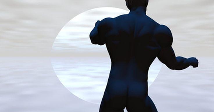 Exercícios para a parte superior das costas. A parte superior das costas é composta por três grandes grupos musculares, incluindo o trapézio, romboides e grande dorsal. Exercícios básicos compostos são ideias para focar na parte superior das costas e ainda estimulam outros grupos musculares, como o abdômen e a parte inferior das costas, além das pernas e dos braços em um grau menor. Você ...