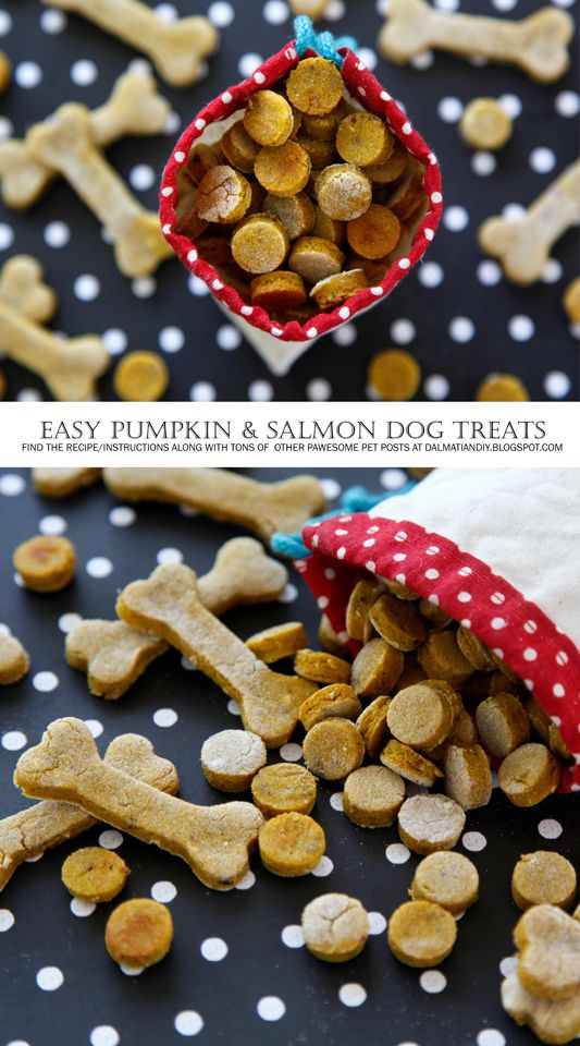 {RECIPE} Pumpkin and Salmon Dog Treats    So easy!  The dogs LOVE these.