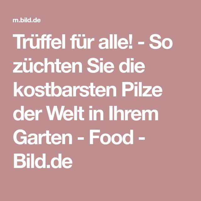 Trüffel für alle! - So züchten Sie die kostbarsten Pilze der Welt in Ihrem Garten - Food - Bild.de