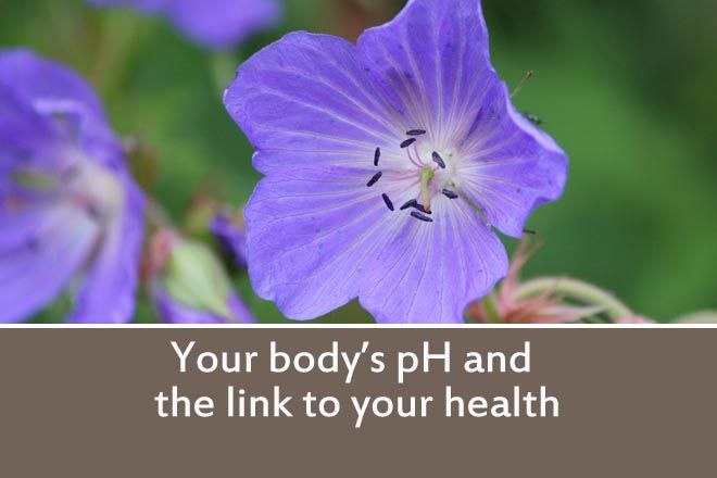The pH level, is a measure of how acidic or alkaline it is. The pH level of your body is important for good health. Many modern diets produce acid in the body, but a more alkaline body leads to bet...