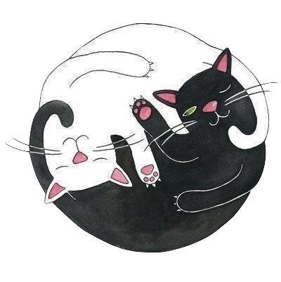 Resultado de imagem para yin e yang tattoo