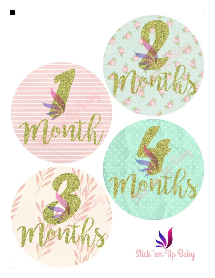 Shabby Chic Monthly Baby Stickers by StickEmUpBaby on Etsy https://www.etsy.com/listing/451418562/shabby-chic-monthly-baby-stickers