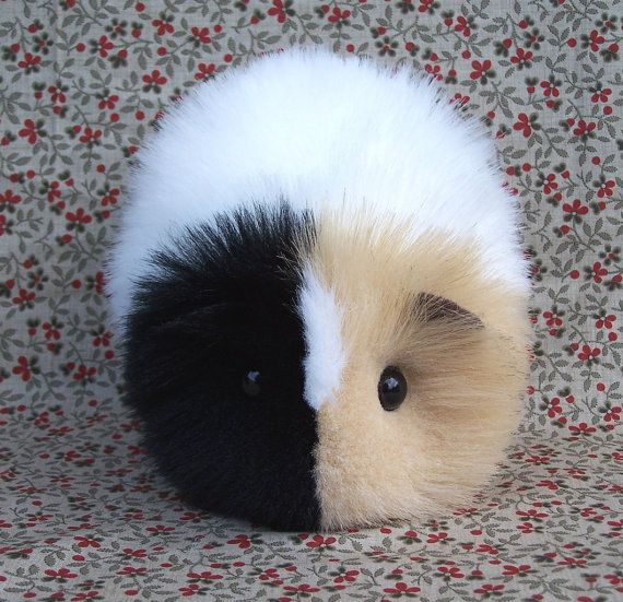 Calico Guinea Pig Cute Handmade Plush Toy by FurryThangs on Etsy