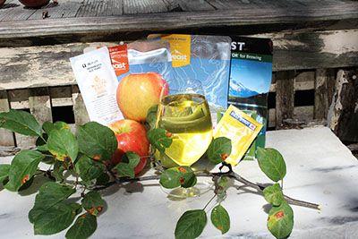 valg av gjær for cider