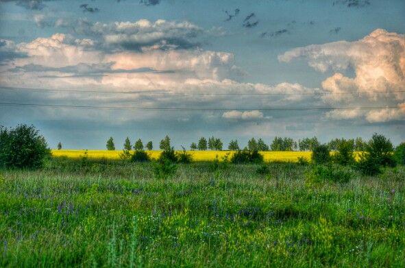 Руссское поле