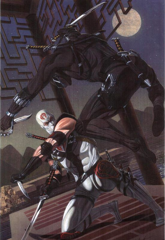 Storm Shadow vs. Snake Eyes by David Michael Beck *