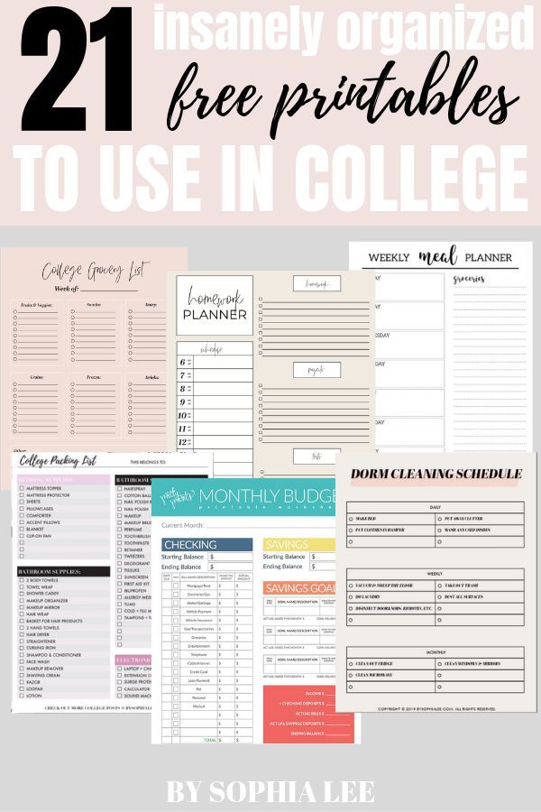 21 Finest Free School Printables Each Pupil Ought to Know About