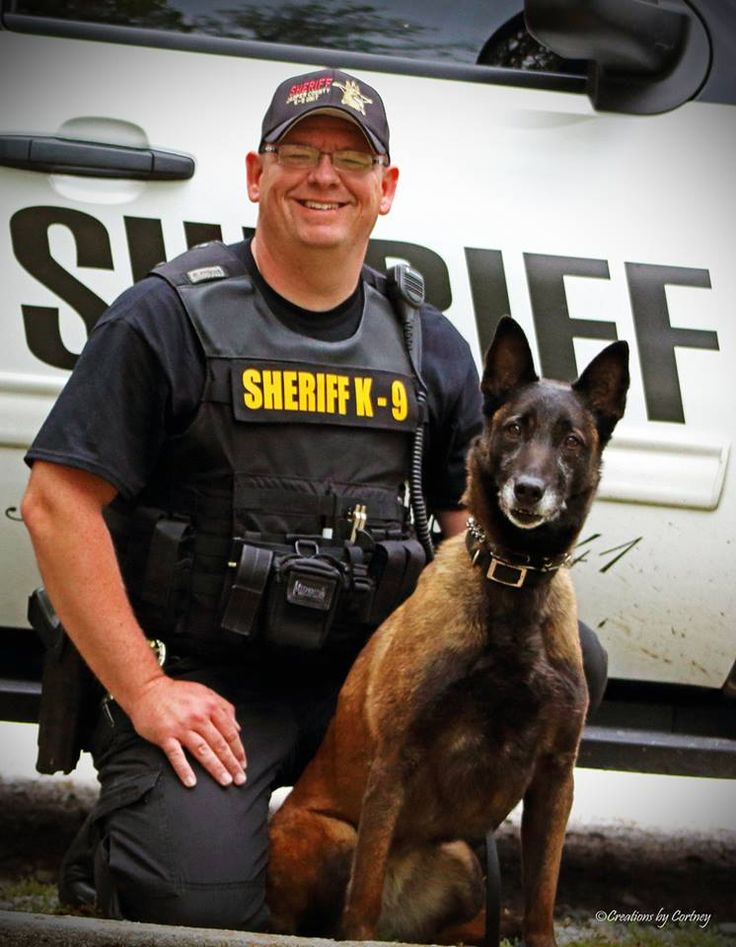K9 Lisa, (retired), has succumbed to cancer after battling health issues since June.    K9 Lisa has been a big part of the Jasper County Sheriff's Office and having over 8 years of working longevity.   Trained with dozens of different law enforcement agencies over the years as well as the US Secret Service, the Department of Homeland Security, tier one groups of the US Navy, US Army, and the US Marines. Lisa was originally trained through the US Air Force.
