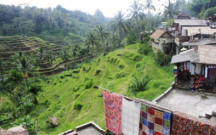 Tegallalang near Ubud, Bali  Photo: Stine Kylsø Pedersen