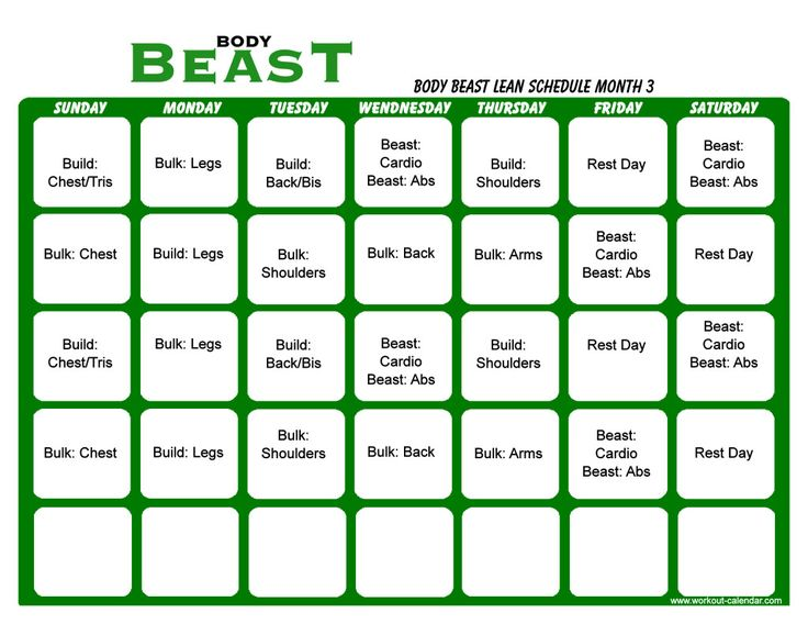Body Beast Lean Schedule Month   Workout    Body