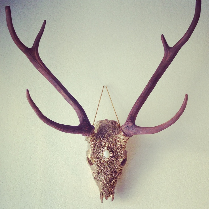 Deer Skull Wall Decor : Best images about skulls on wall decor