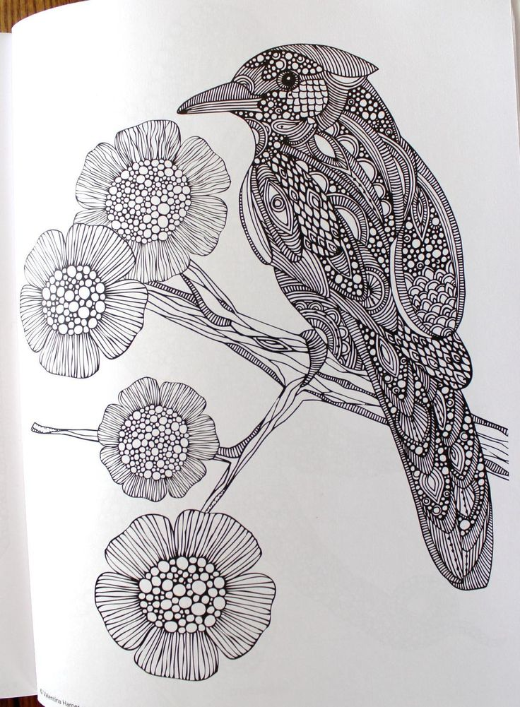 design coloring pages of animals - photo#37