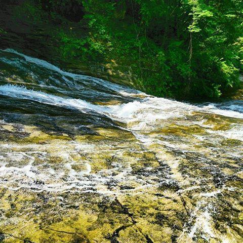 養老渓谷 粟又の滝 日光の湯滝みたいに滝の横を歩ける。 滑らかな岩肌をナメるように水が滑る様子を見ていると、昔の船橋ヘルスセンターの大滝スベリを思い出し滑りたくなった… 房総の代表的な滝である。 #20160519 #養老渓谷 #粟又の滝 #千葉 #房総でハワイ気分 #boso #japan #hawaii #キタムラ写真投稿 #igersjp #longexposure_japan #vip_world_photo #earth_magic #α6000 #tokyocameraclub #photo_shorttrip