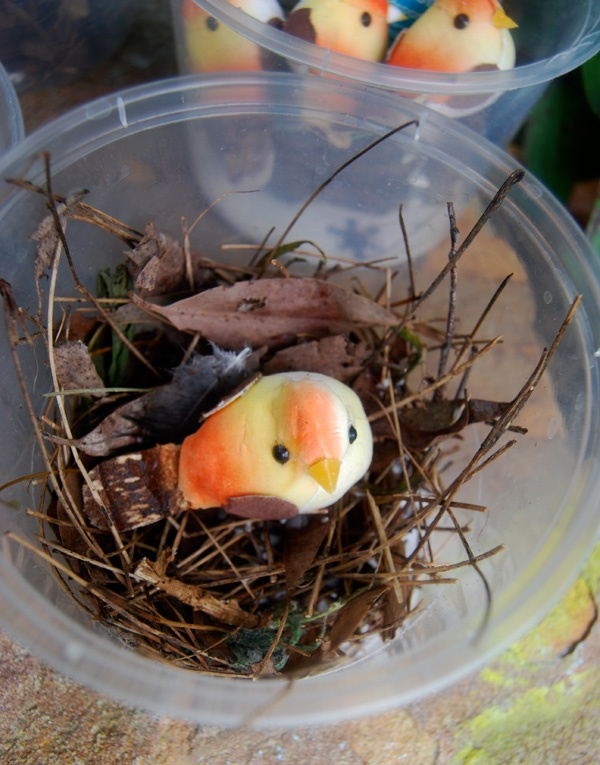 At home with Ali: Cute little bird nests