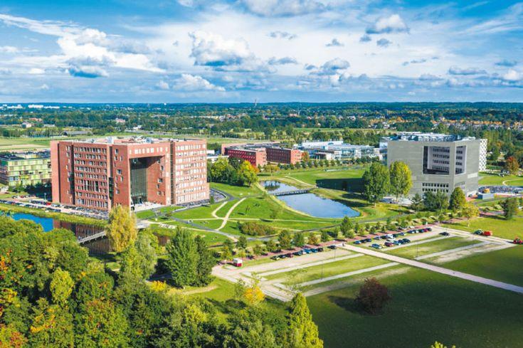 La Universidad y Centro de Investigación Wageningen, en los Países Bajos, acaba de ser coronada como la más verde de la Tierra. ¿Cuál es su secreto?