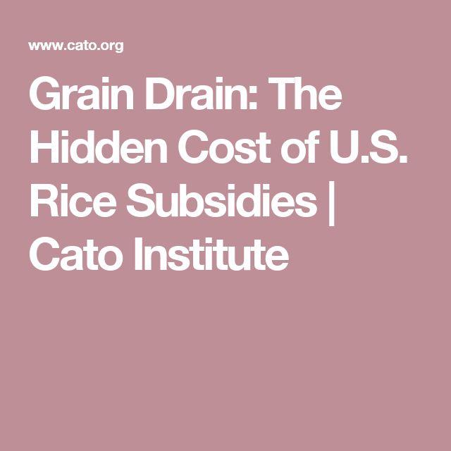 Grain Drain: The Hidden Cost of U.S. Rice Subsidies   Cato Institute