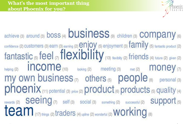 Reasons why you Became a Phoenix Trader : self-employed in Direct sales