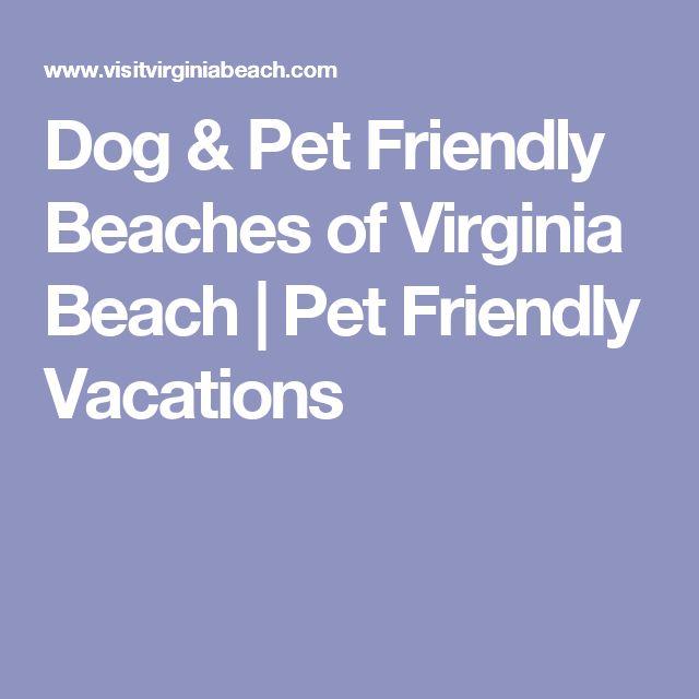 Dog & Pet Friendly Beaches of Virginia Beach | Pet Friendly Vacations