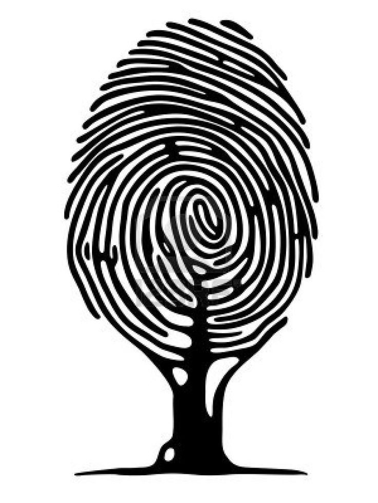 fingerprint picture - Google Search