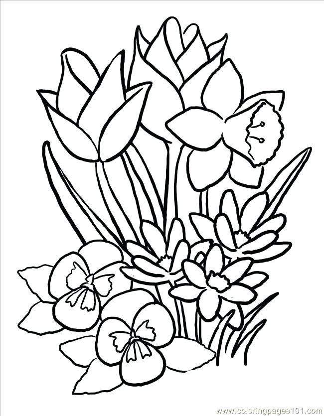 Easter Flower Coloring Pages Bunny With Flower And Egg Easy Coloring