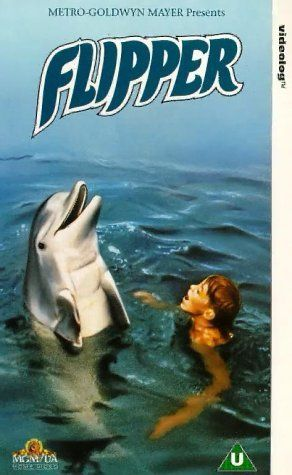 Flipper, back when Florida was exotic