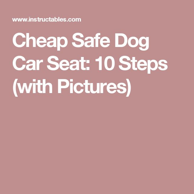 Cheap Safe Dog Car Seat: 10 Steps (with Pictures)