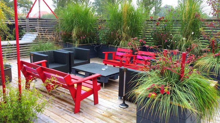 Colorful, lush contemporary garden. Miscanthus. Patio. Design: Eira Fogelberg