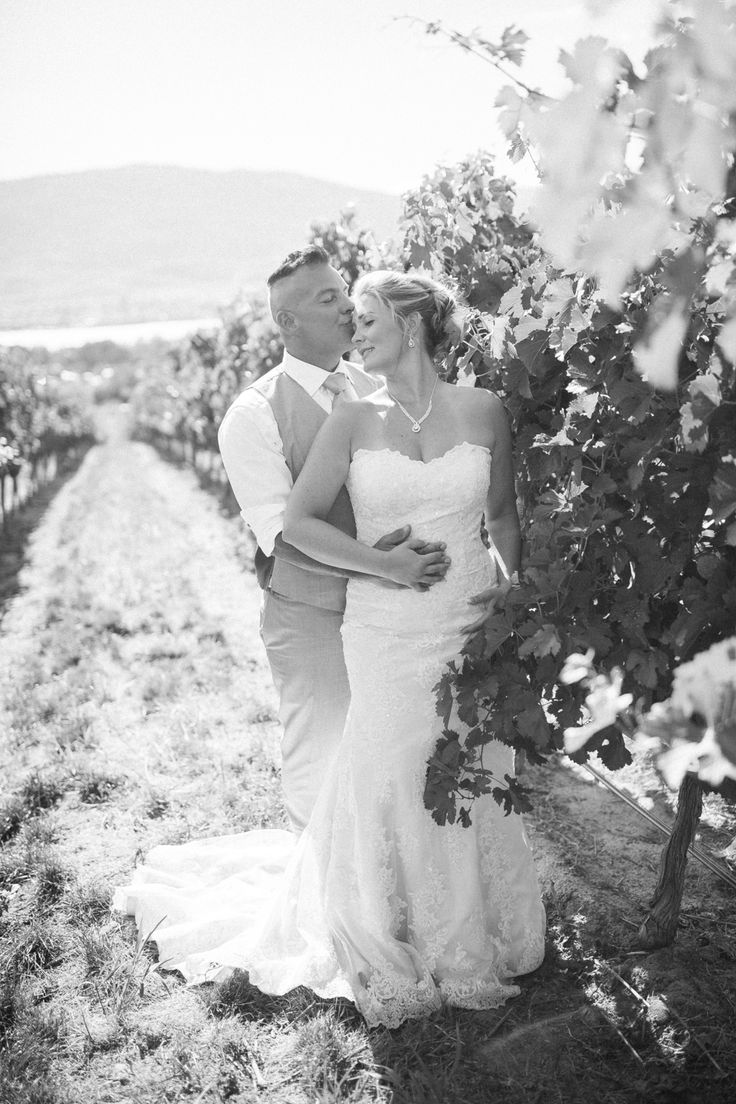 Vineyard Wedding Kisses