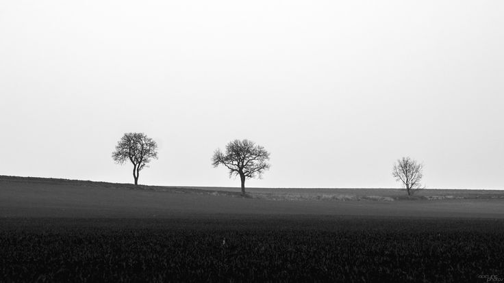 les 3 grâces | Flickr - Photo Sharing!