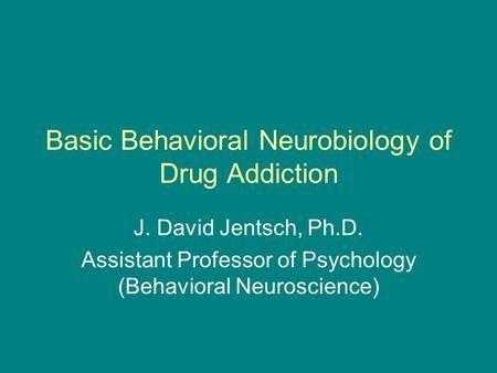 Basic Behavioral Neurobiology of Drug Addiction J. David Jentsch, Ph.D. Assistant Professor of Psychology (Behavioral Neuroscience)>