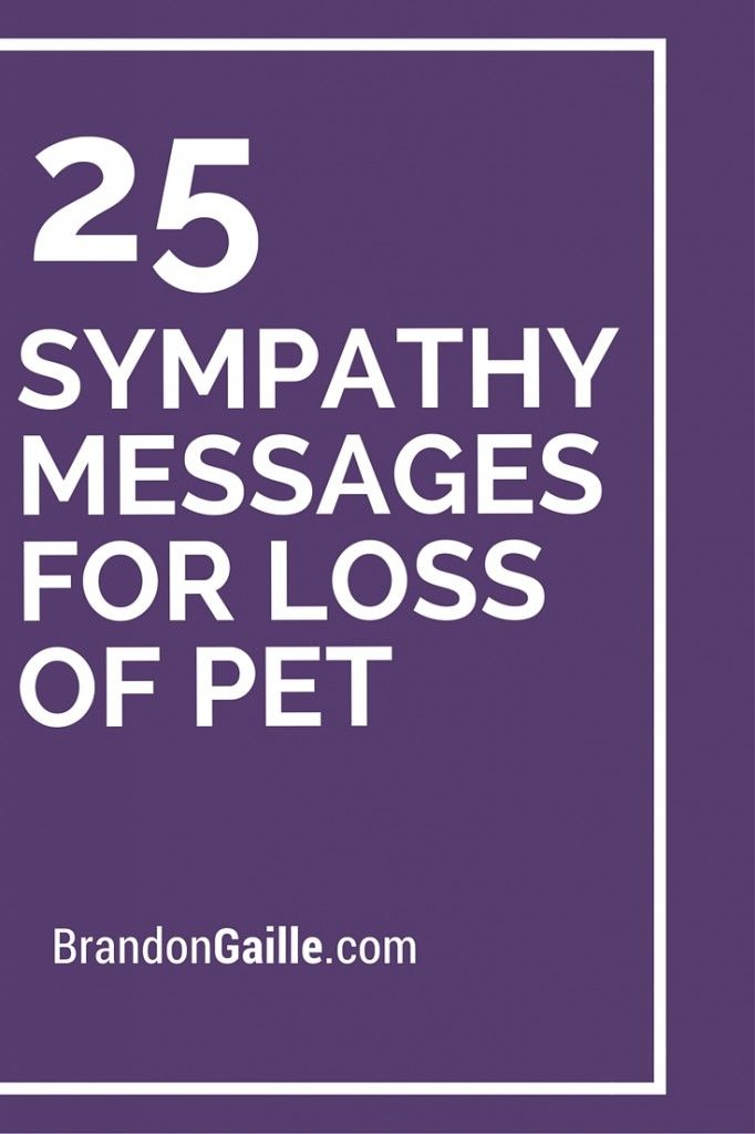 25 Sympathy Messages for Loss of Pet