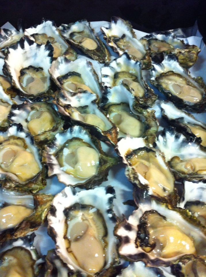 Clyde river oysters