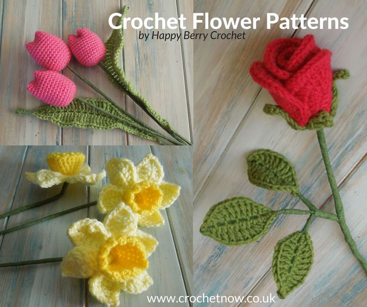 Why give real flowers when you can give crochet flowers, which will last forever. With Valentine's Day and Mother's Day not far away we thought you'd enjoy learning how to crochet some realistic looking flowers. There's also a growing trend for hospitals to ask visitors not to bring in bouquets of flowers due to the …