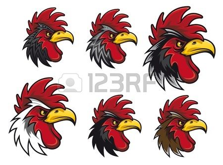 T�tes de cock Cartoon d�finies pour mascotte ou pour une autre conception photo