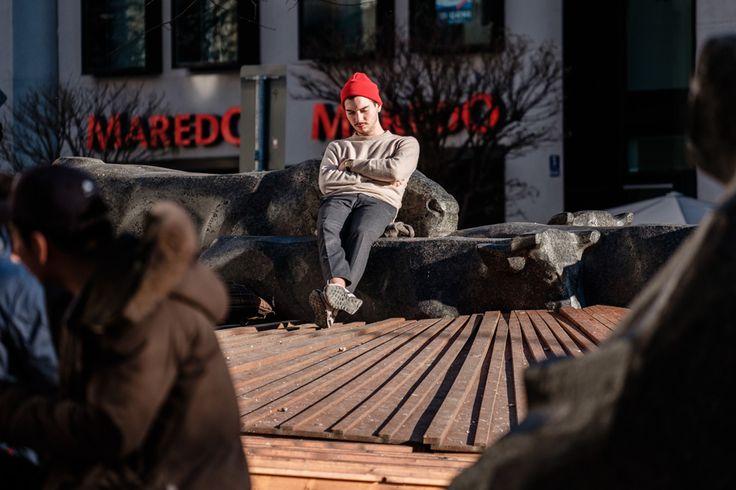 NEU: Fotokurs München Safari