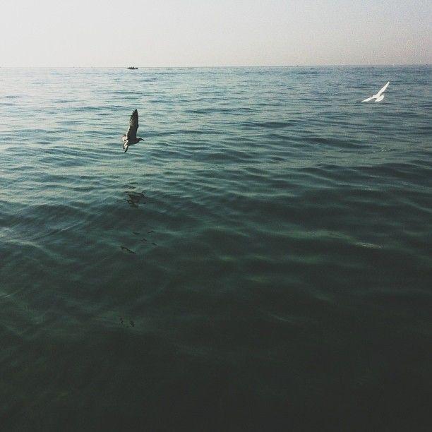 COLORE / COLOR       #my_marina eBook       Photo courtesy of @Emma Zangs B. [http://instagram.com/hypoisona]