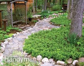6 Common Lawn Problems and How to Fix Them
