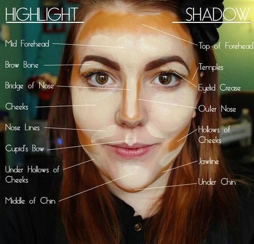 Make up guide: What to highlight and what to shadow Highlight should be 1-2 shades lighter than base