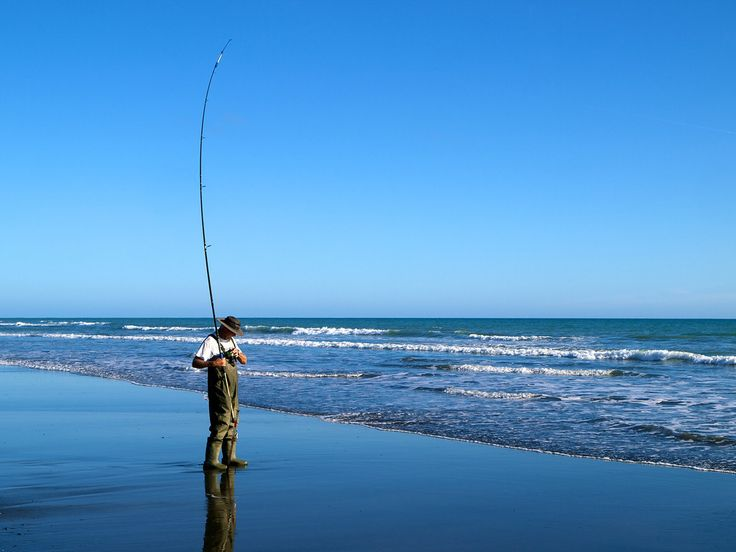 Brent Rolston surfcasting near Waverley, trying to decide what's on the end of the line.
