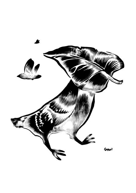 Bird and leaf. Brush and ink on paper.