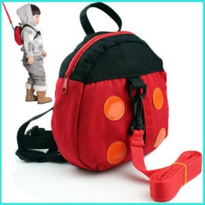 leash/backpack...must have for a toddler!