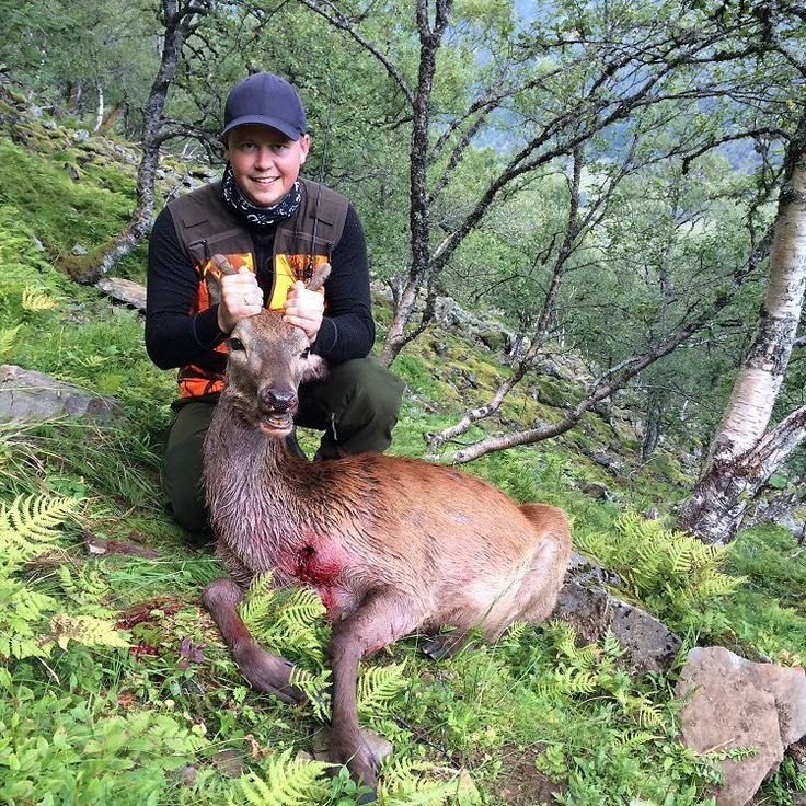 Åkrafjorden - a beautiful place to hunt. Increased my booking to 10 friends yesterday... October cant come fast enough! @akrafjordenhunting #jakt #jagd #hunter #hunt #hunting #chasse #caza #rifle #guns #wildlife #jaktbilder #njff #norgesjegere #huntinglife #nordichunter #villmarksliv #jeger #deer #deerhunting #elkhunting #hjortejakt #hjort #akrafjorden #åkrafjorden #mittjaktblad #redstag by bukkefall