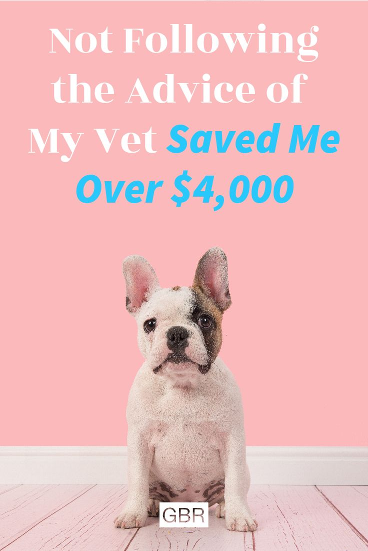 Pets Saving Money Saving Money Saving Money Frugal Living Frugal Living Ideas Simplify